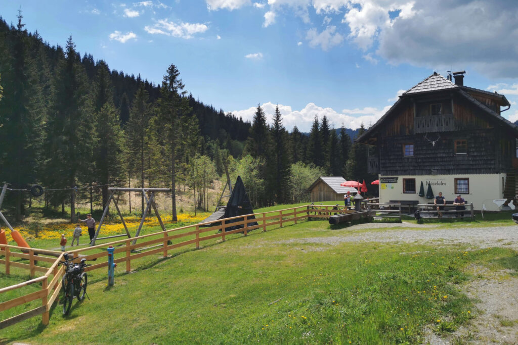BrunnwirtNews-Summerfeeling-2-Möslalm
