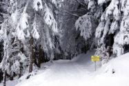 Hotel Brunnwirt - News Vorbereitung fuer den Winter - 6